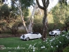 jaguar-wedding-cars-perth-29