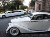 limousins-perth-western-australia-2