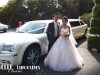 perth-wedding-limo-hire-42