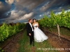 fotographia-wedding-cars-20