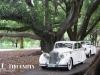 jag-wedding-limos-perth-69