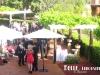 the-vines-resort-wedding