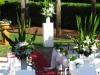 vines-wedding-ceremony-76