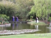 willow-pond-wedding-car-hire