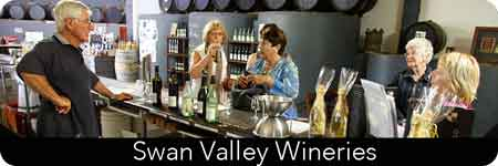 wine tours of the swan valley