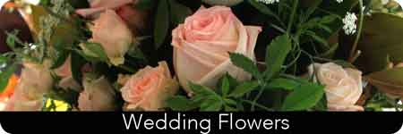 perth wedding suppliers