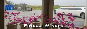 limousine wine tour