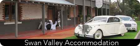 tours of the swan valley