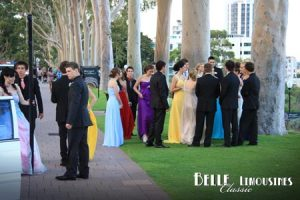 Having fun socialising at Kings Park before the ball