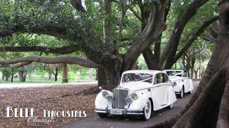 hyde park wedding limousines