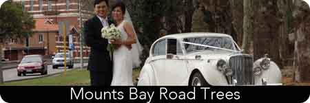perth city weddings