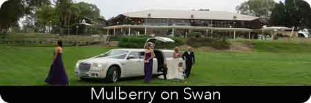 stretch limo hire