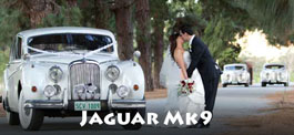 jaguar-mk9-wedding-cars