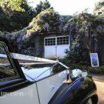 bridal-cars-at-brookside-winery-31