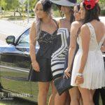 limousine-hire-9