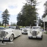 belle-limousines-at-esplanade-hotel-1