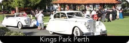 weddings at kings park
