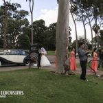 wedding-cars-at-kings-park-perth-4