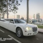 wedding-cars-at-kings-park-perth-5