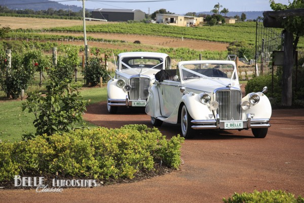 jaguar bridal cars